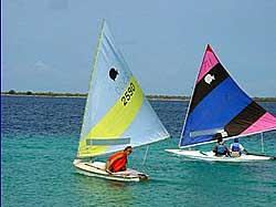 Sunfish sailing Bonaire